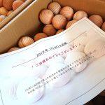当選者のところへ木の球500個を発送しました!